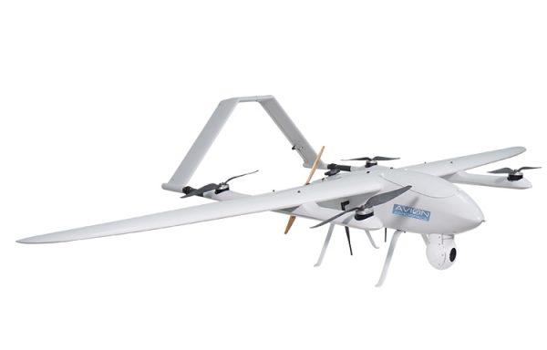 Avion VTOL 260- Baby Shark Model